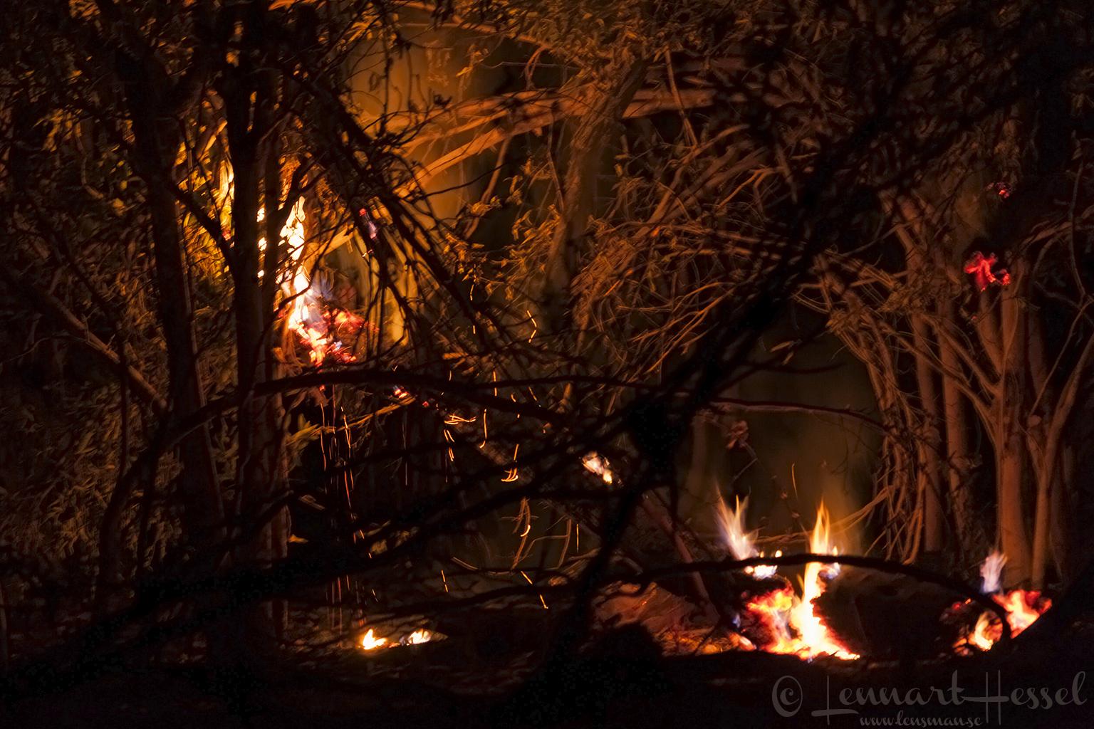 Khwai is burning in Khwai Community Area, Botswana