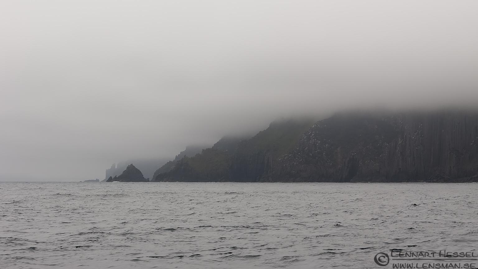 Coastline in the fog Tasman Peninsula