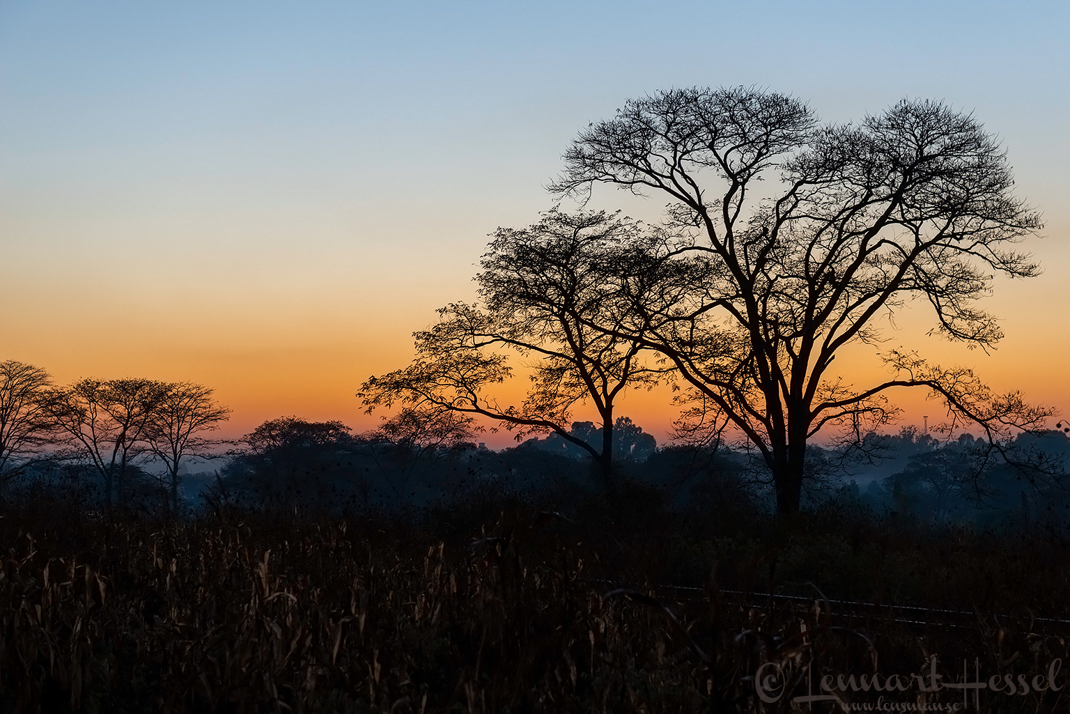 Sunrise Chinhoyi Mana Pools National Park, Zimbabwe