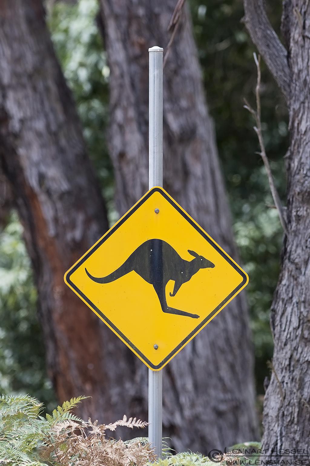 Road sign Australia Victoria Raymond Island