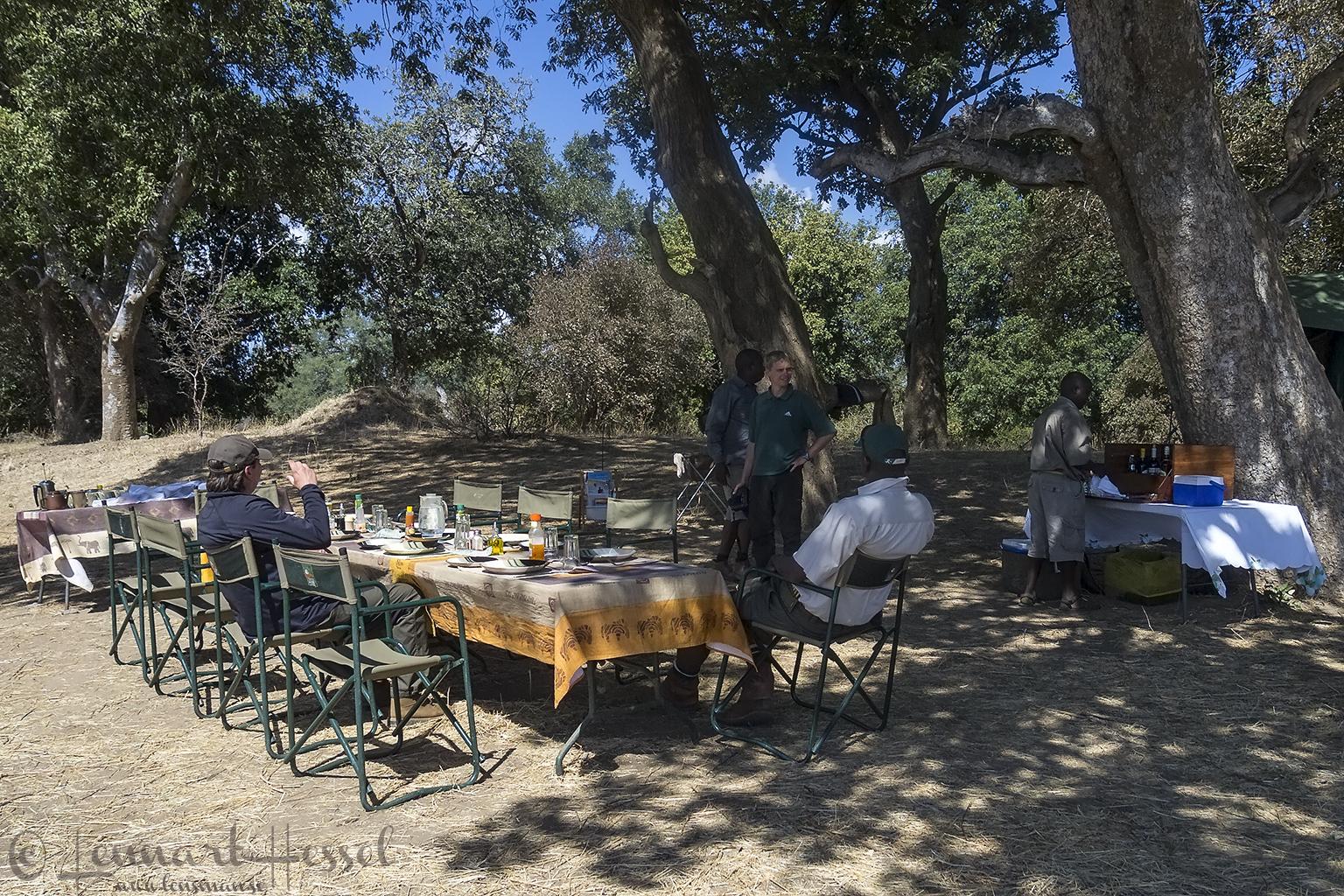 In camp Mana Pools National Park Zimbabwe