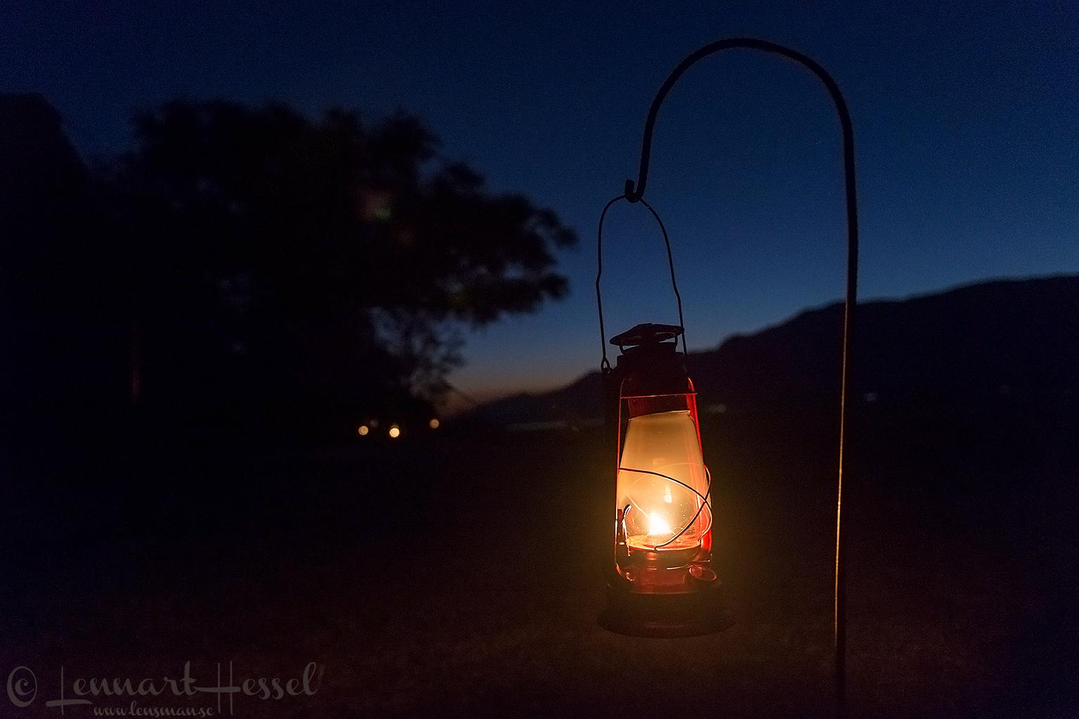 The lamp Mana Pools National Park Zimbabwe