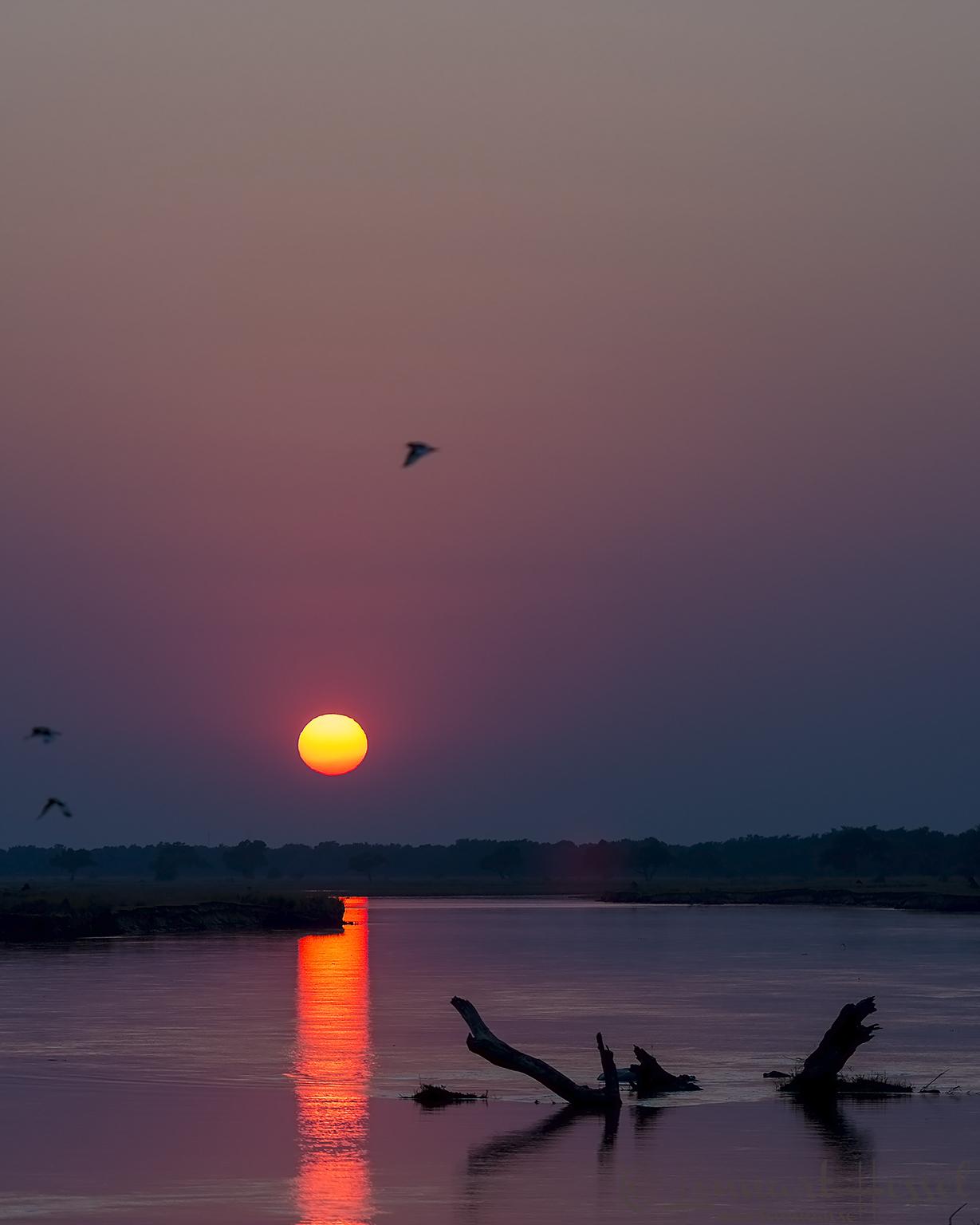 Sunrise Mana Pools National Park Zimbabwe