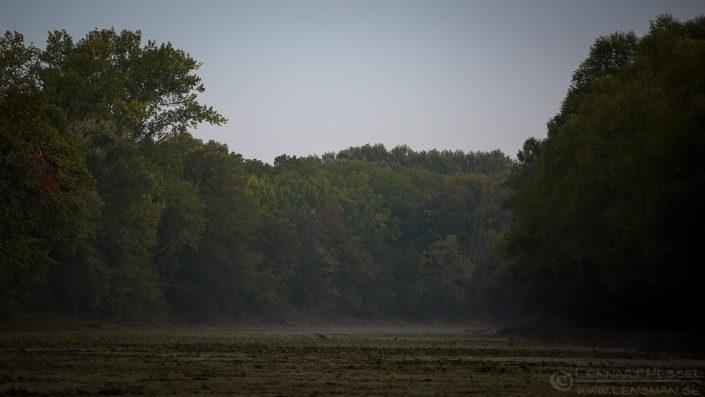 Riverside morning Duna-Dráva National Park