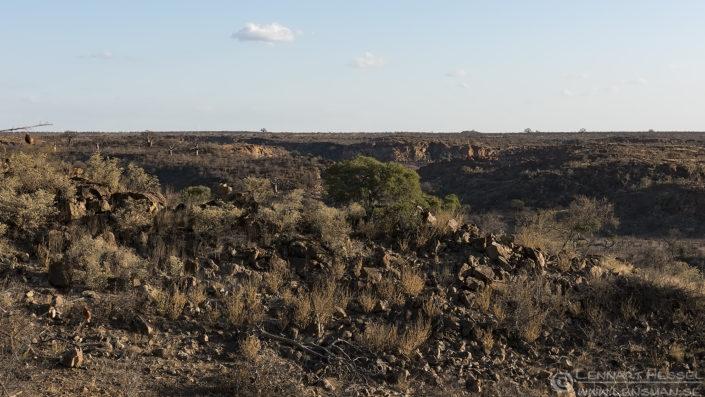 Mapungubwe South Africa