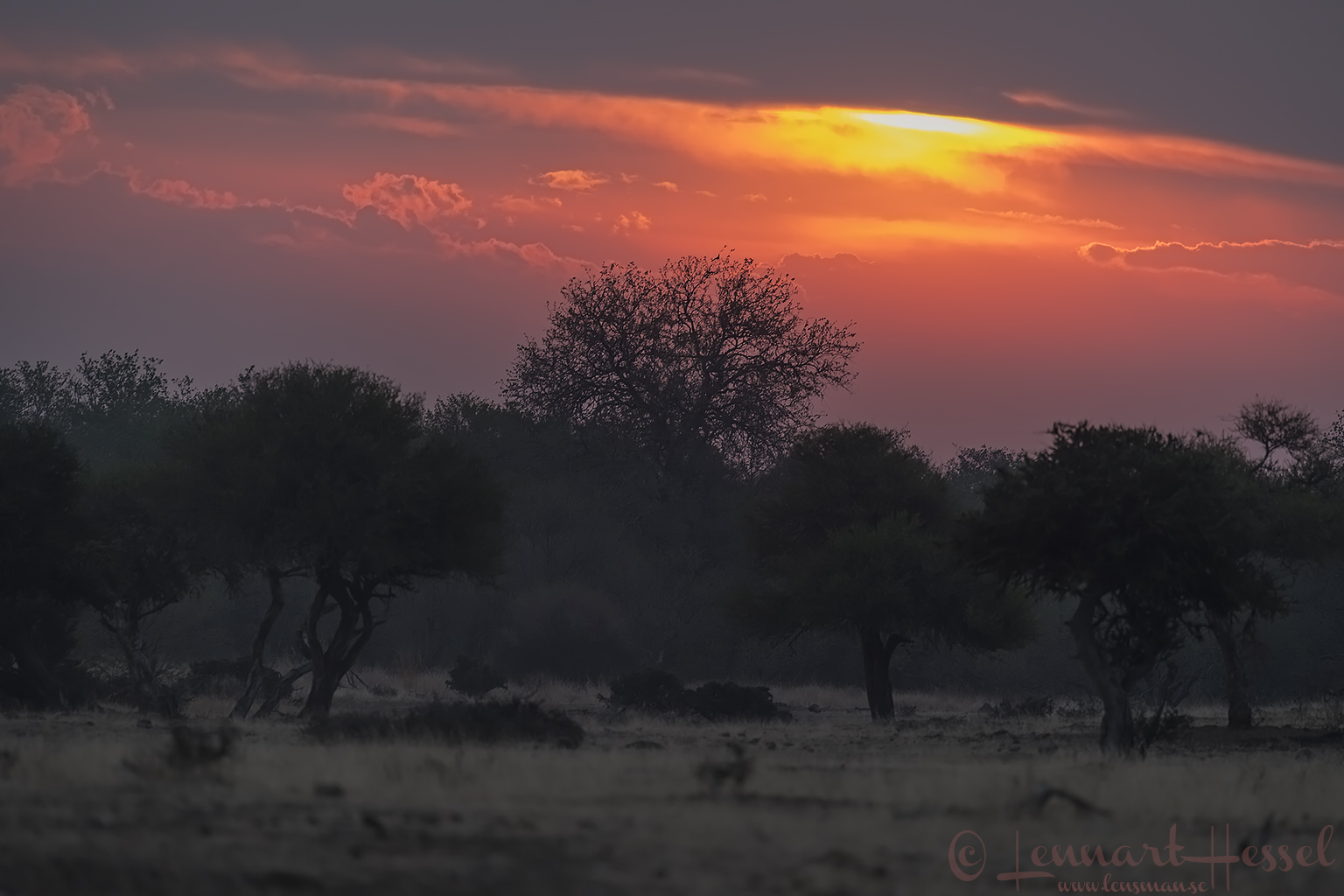 Sunset Mashatu eye-level Tuli Block Mashatu Game Reserve