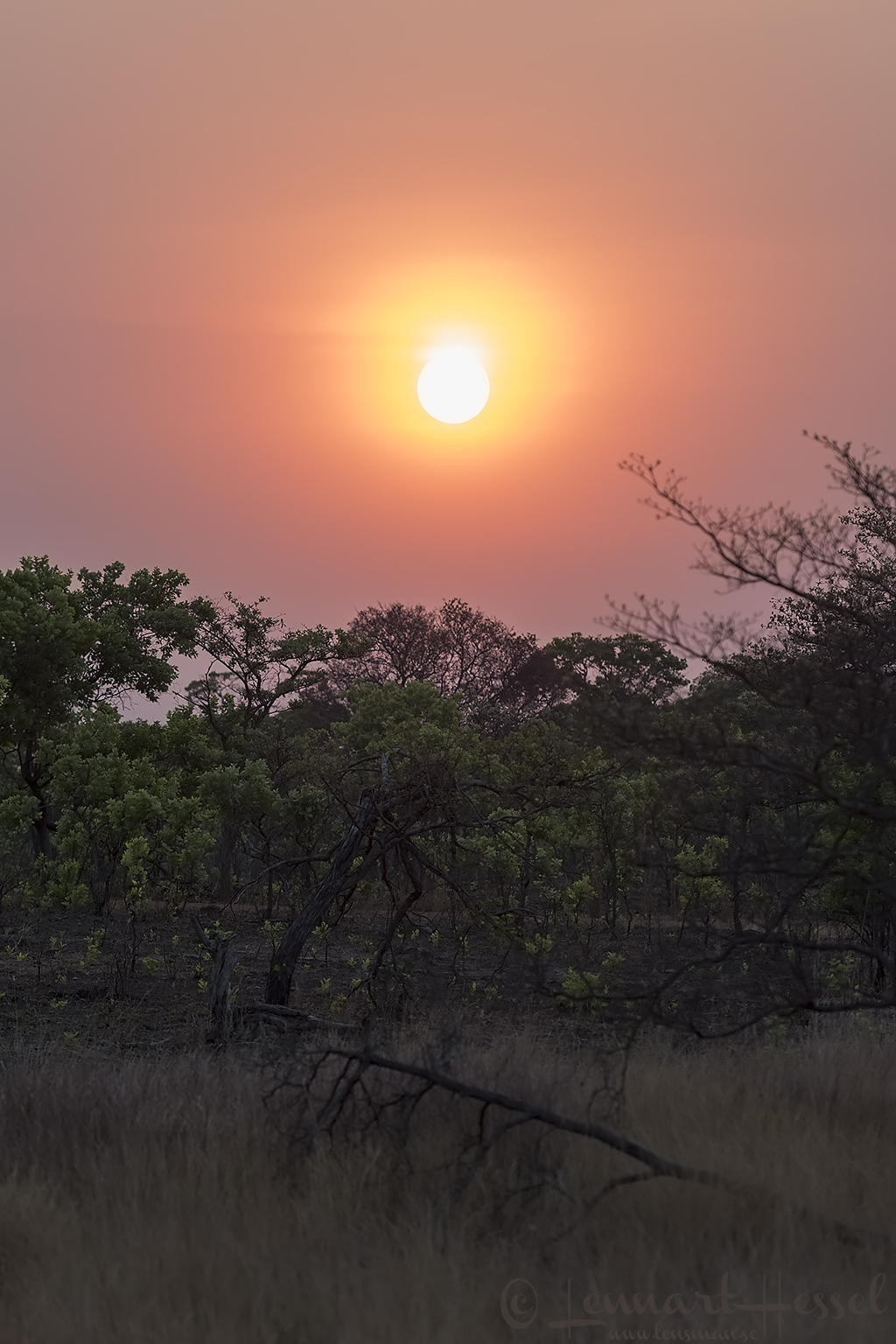 Sunset Kafue National Park