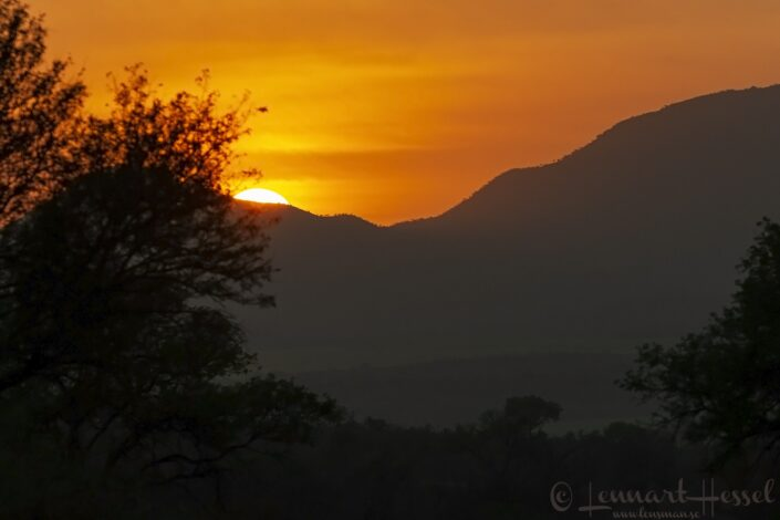 Sunrise in Kruger National Park, South Africa