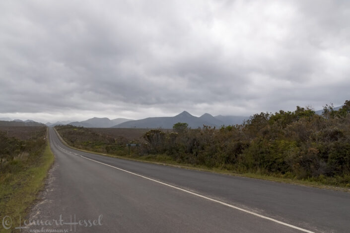 On the road to Knysna, South Africa