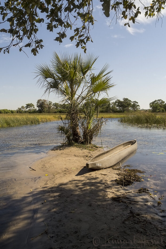 The Mokoro Boat Station in the Okavango Delta, Botswana