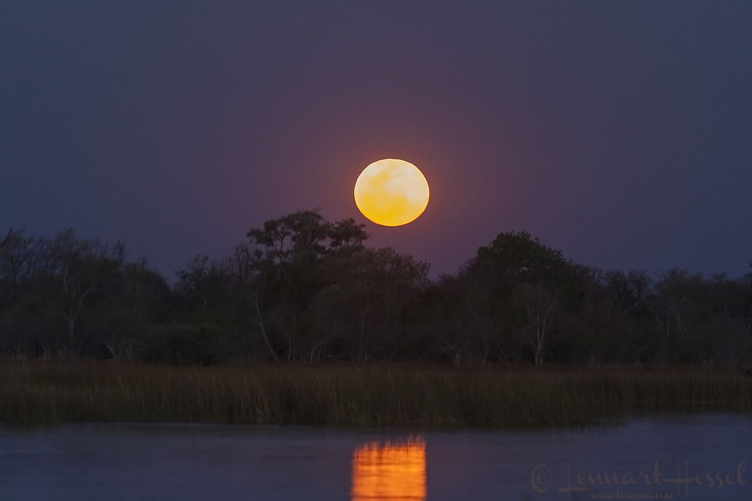 The moon in Moremi Game Reserve, Botswana