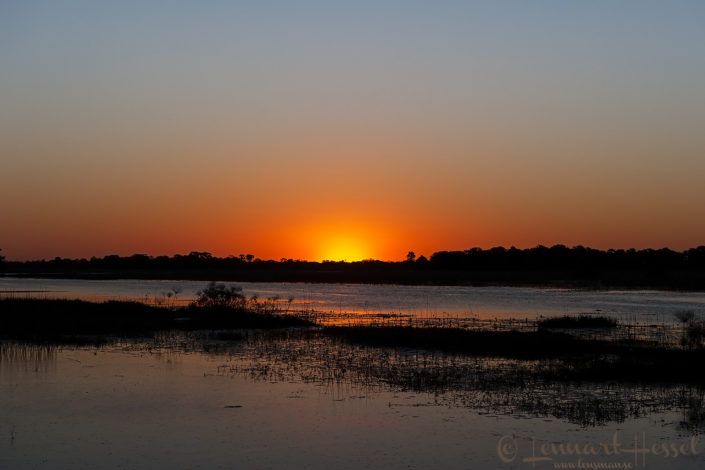 Sunset over the Thamalakane River in Botswana