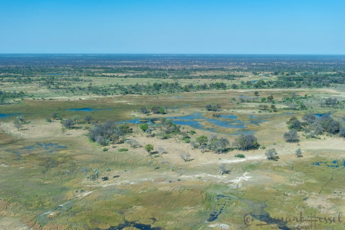 Okavango Delta seen from above, Botswana