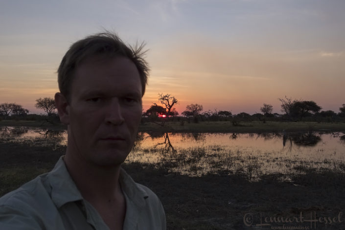Sunset portrait in Khwai Community Area, Botswana