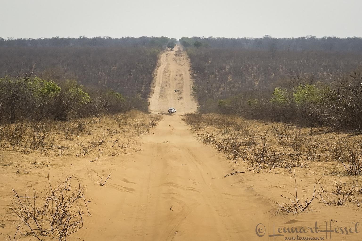 Negotiating the sand dunes In Chobe National Park, Botswana