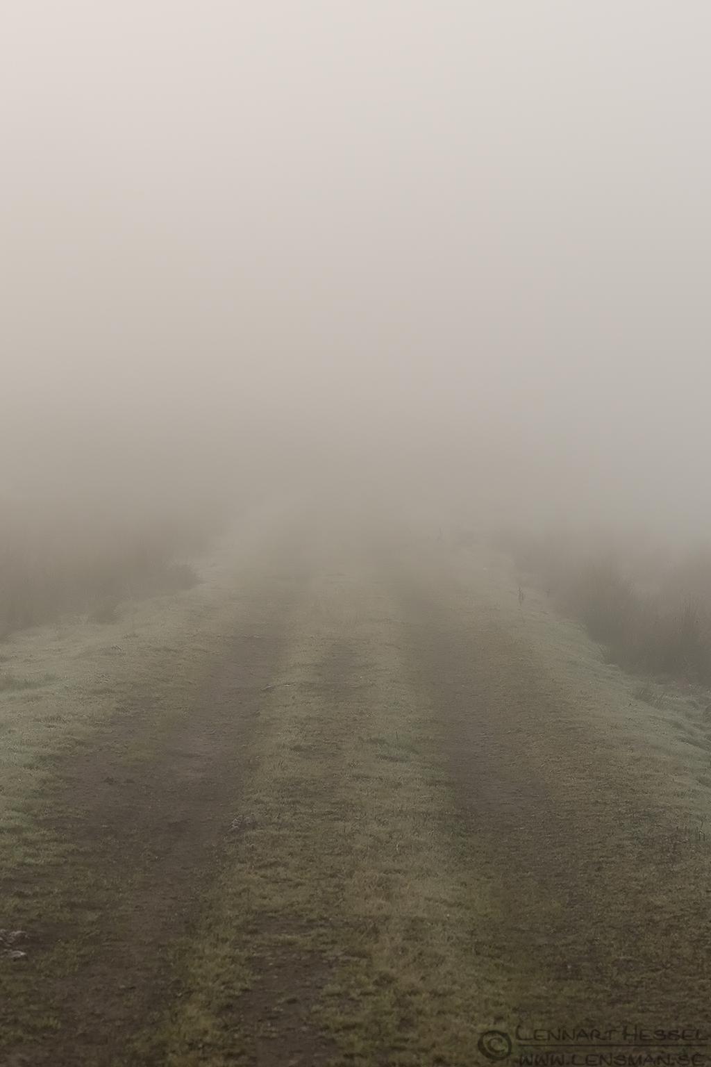 Disapperaing road fog