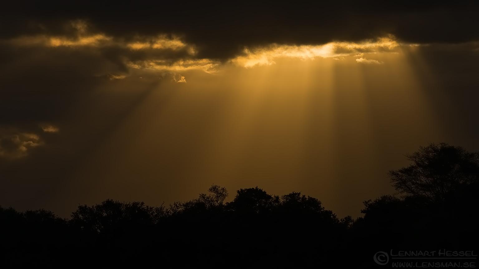 Sunset Kruger National Park South Africa