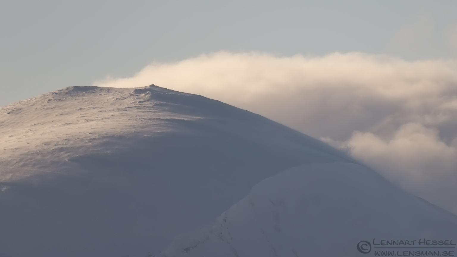Winter Dovrefjell