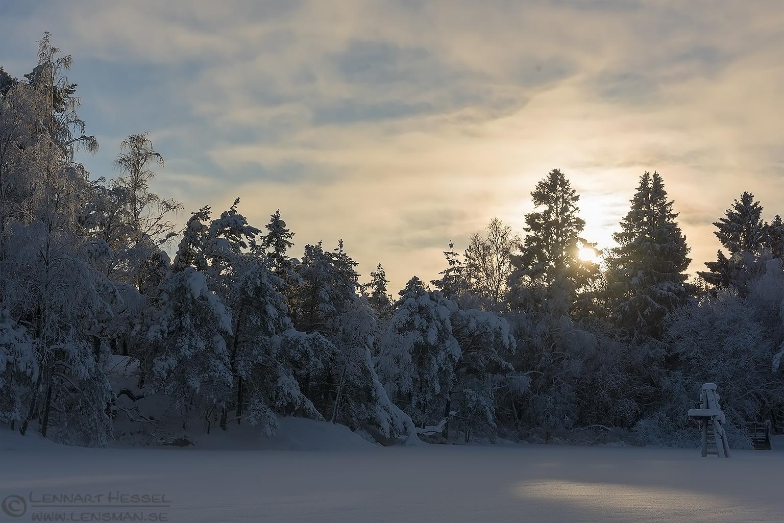 Winter sun at Surtesjön