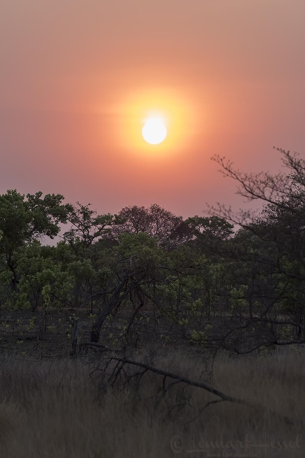 Sunset Kafue National Park