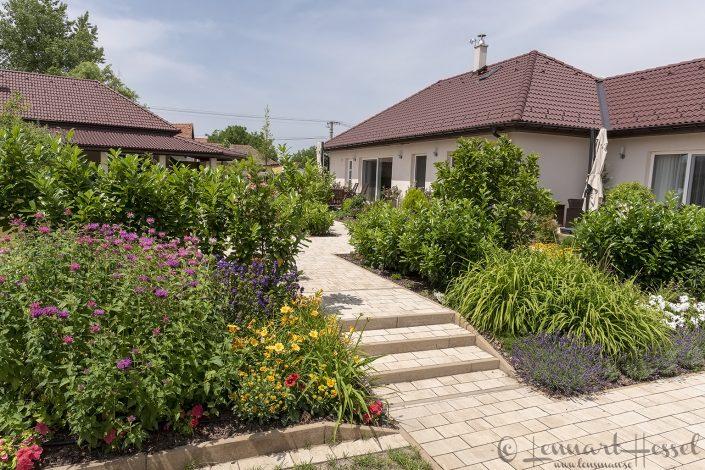 Villa Aquila Hungary Bee-eater Bonanza 2018