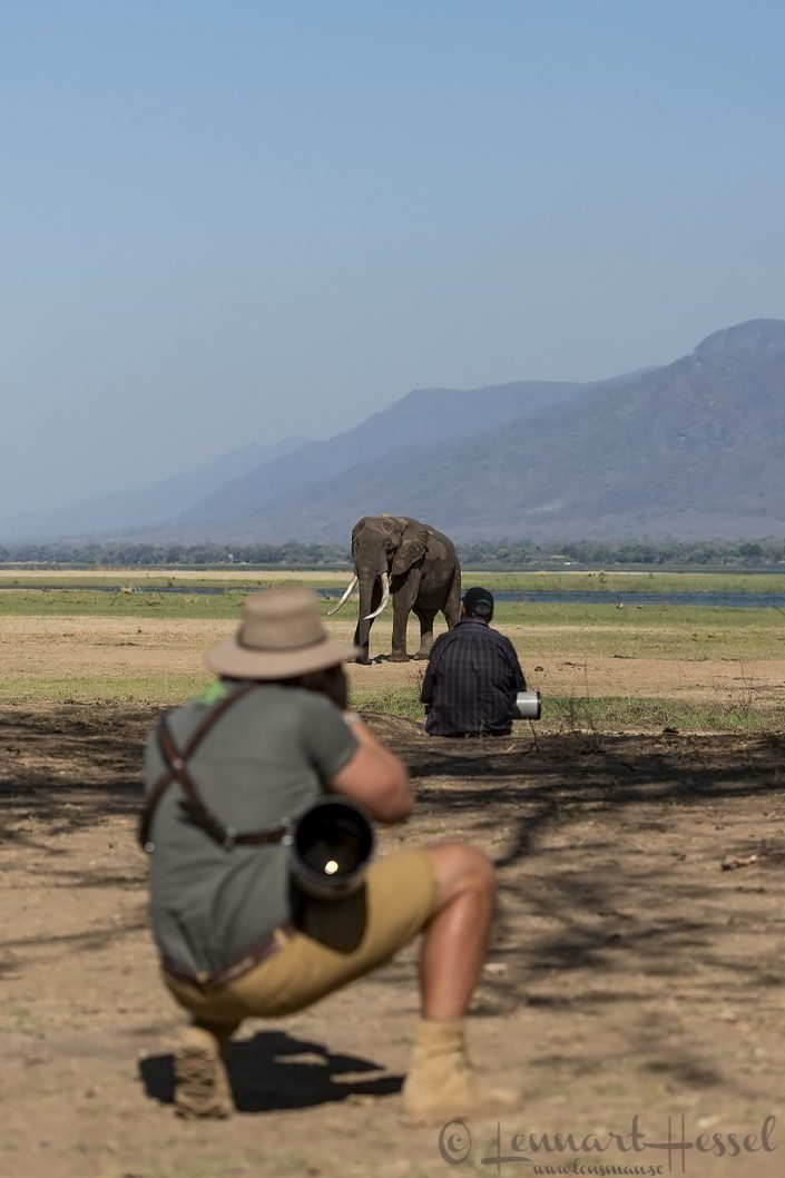 Boswell and Marlon du Toit Mana Pools National Park